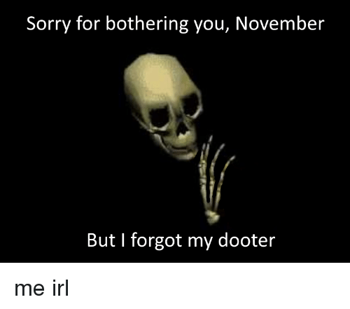 Sorry, Irl, and Me IRL: Sorry for bothering you, November  But I forgot my dooter