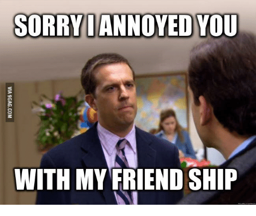 Sorry I Annoyed You With My Friendship Cat
