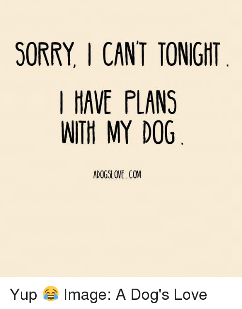 sorry i cant tonight have plans with my dog adogslove com 18588973 sorry i cant tonight have plans with my dog adogslovecom yup