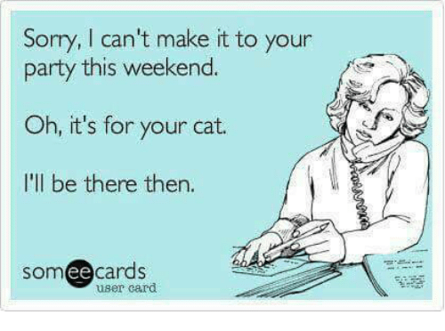 Memes, Sorry, and Being There: Sorry, l can't make it to your  party this weekend.  Oh, it's for your cat.  I'll be there then.  ee  cards  user card