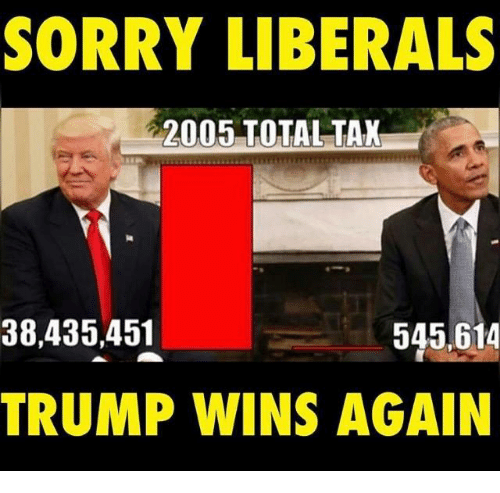 SORRY LIBERALS 2005 TOTAL TAX 38435451 545 614 TRUMP WINS