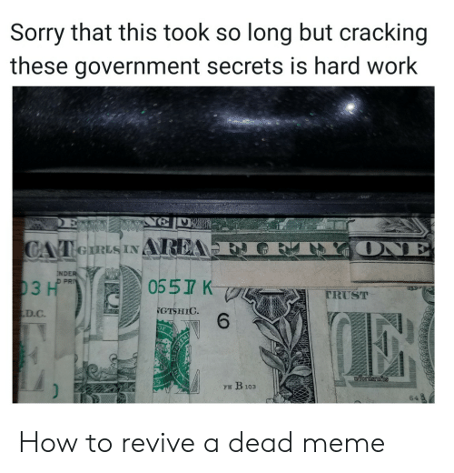 Meme, Sorry, and Work: Sorry that this took so long but cracking  these government secrets is hard work  ONE  CAT eIRLS INAREA  NDER  D PRI  0557 K  03 H  TRUST  GTSHIC  6  D.C  iordsrufus  FW B103  64 How to revive a dead meme