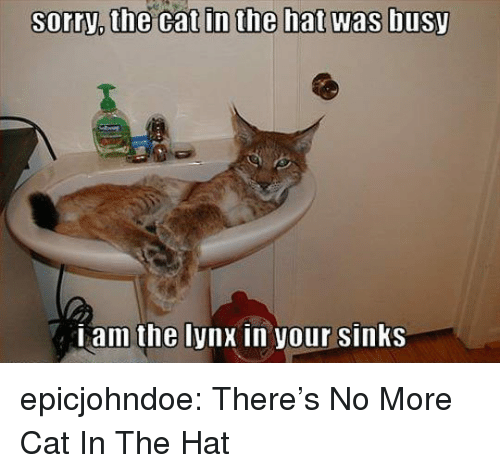 Sorry, Tumblr, and Blog: sorry,  the  cat  in  the  hat  was  busy  Lam the lynx in your sinKS epicjohndoe:  There's No More Cat In The Hat