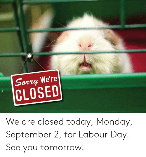 Memes, Sorry, and Today: Sorry We're  CLOSED We are closed today, Monday, September 2, for Labour Day. See you tomorrow!