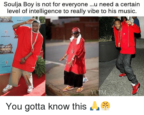 Music, Soulja Boy, and Dank Memes: Soulja Boy is not for everyone  ...u need a certain  level of intelligence to really vibe to his music. You gotta know this 🙏😤