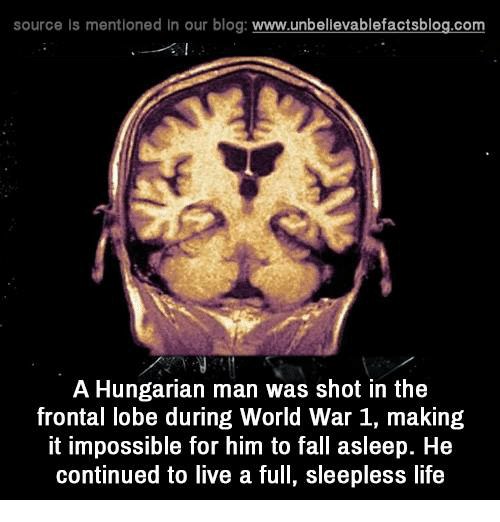 source is mentioned in our blog www unbelievablefactsblog com a hungarian man 6762957 ✅ 25 best memes about hungarian hungarian memes