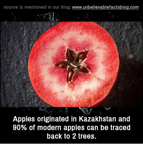 Memes, Blog, and Trees: source is mentioned in our blog  www.unbelievablefactsblog.com  Apples originated in Kazakhstan and  90% of modern apples can be traced  back to 2 trees.