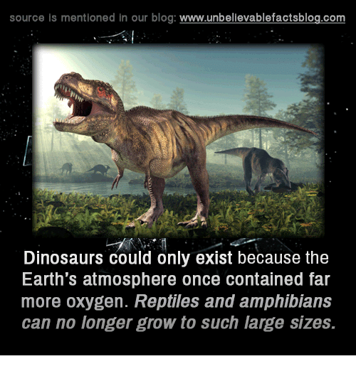 Memes, Blog, and Dinosaurs: source is mentioned in our blog  www.unbelievablefactsblog.com  Dinosaurs could only exist because the  Earth's atmosphere once contained far  more oxygen. Reptiles and amphiblans  can no longer grow to such large sizes.