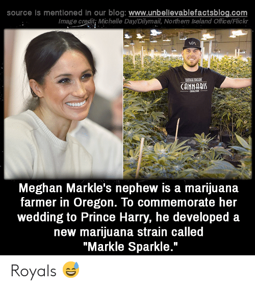 "Memes, Prince, and Prince Harry: source is mentioned in our blog: www.unbelilevablefactsblog.co  Image credit; Michelle Day/Dilymail, Northern Ireland Office/Flick  CANNABI  Meghan Markle's nephew is a marijuana  farmer in Oregon. To commemorate her  wedding to Prince Harry, he developed a  new marijuana strain called  ""Markle Sparkle."" Royals 😅"