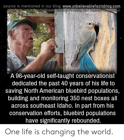 Life, Memes, and American: source is mentioned in our blog: www.unbellevablefactsblog.com  A 96-year-old self-taught conservationist  dedicated the past 40 years of his life to  saving North American bluebird populations,  building and monitoring 350 nest boxes all  across southeast Idaho. In part from his  conservation efforts, bluebird populations  have significantly rebounded One life is changing the world.