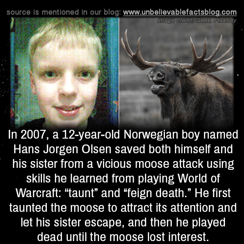 """Memes, Lost, and Blog: source is mentioned in our blog: www.unbellevablefactsblog.com  In 2007, a 12-year-old Norwegian boy named  Hans Jorgen Olsen saved both himself and  his sister from a vicious moose attack using  skills he learned from playing World of  Warcraft: """"taunt"""" and """"feign death."""" He first  taunted the moose to attract its attention and  let his sister escape, and then he played  dead until the moose lost interest."""