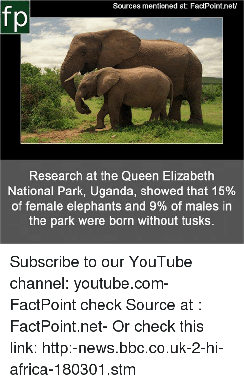 Africa, Memes, and News: Sources mentioned at: FactPoint.net/  fp  Research at the Queen Elizabeth  National Park, Uganda, showed that 15%  of female elephants and 9% of males in  the park were born without tusks. Subscribe to our YouTube channel: youtube.com-FactPoint check Source at : FactPoint.net- Or check this link: http:-news.bbc.co.uk-2-hi-africa-180301.stm