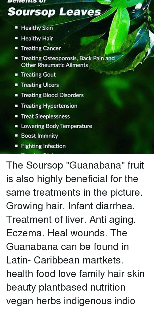 Soursop Leaves Healthy Skin Healthy Hair Treating Cancer Treating