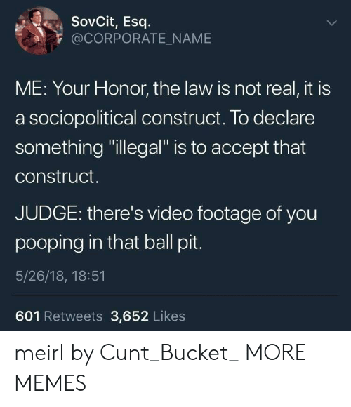 """Dank, Memes, and Target: SovCit, Esq  @CORPORATE_NAME  ME: Your Honor, the law is not real, it is  a sociopolitical construct. To declare  something """"illegal"""" is to accept that  construct.  JUDGE: there's video footage of you  pooping in that ball pit  5/26/18, 18:51  601 Retweets 3,652 Likes meirl by Cunt_Bucket_ MORE MEMES"""