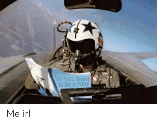 Irl, Me IRL, and Pilot: SoYou Want  to Be a Pilot Me irl