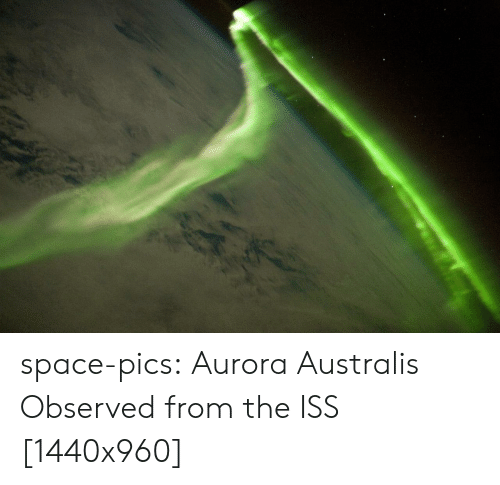 Tumblr, Blog, and Http: space-pics:  Aurora Australis Observed from the ISS [1440x960]