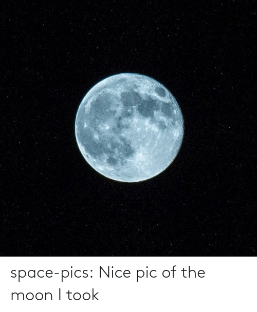 Tumblr, Blog, and Moon: space-pics:  Nice pic of the moon I took
