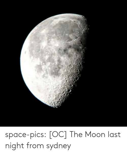 Tumblr, Blog, and Moon: space-pics:  [OC] The Moon last night from sydney