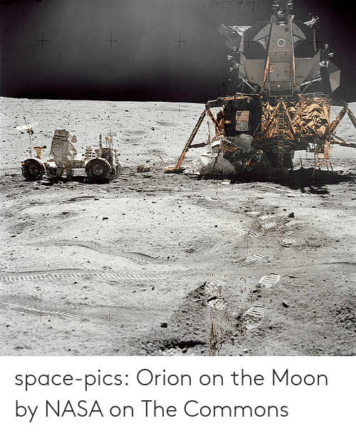Nasa, Tumblr, and Blog: space-pics:  Orion on the Moon by NASA on The Commons