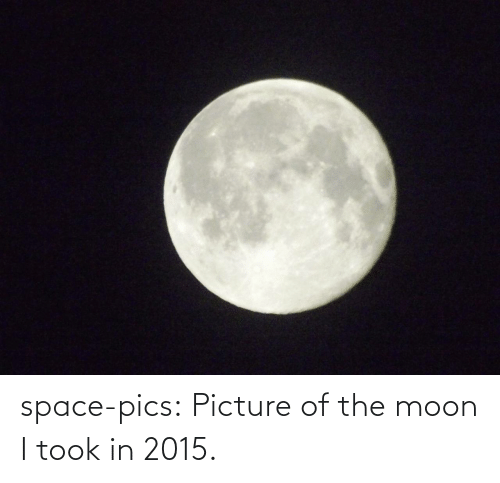 Tumblr, Blog, and Moon: space-pics:  Picture of the moon I took in 2015.