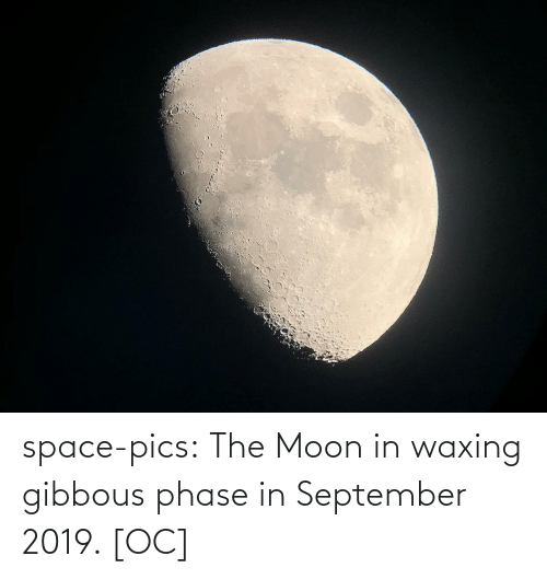 Tumblr, Blog, and Moon: space-pics:  The Moon in waxing gibbous phase in September 2019. [OC]