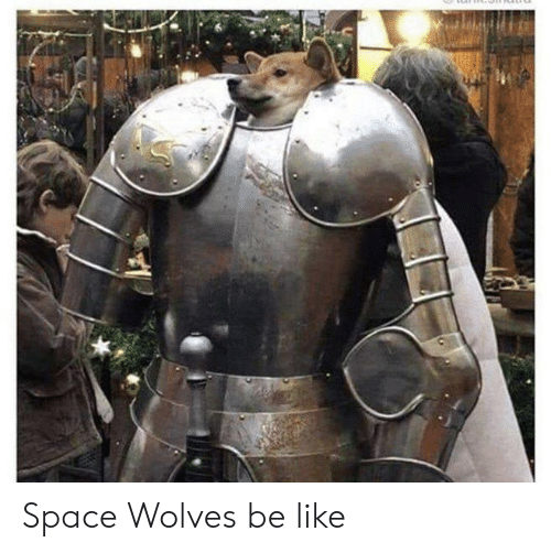 Be Like, Space, and Wolves: Space Wolves be like