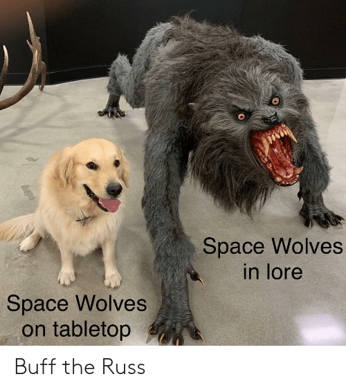 Space, Wolves, and Buff: Space Wolves  in lore  Space Wolves  on tabletop Buff the Russ