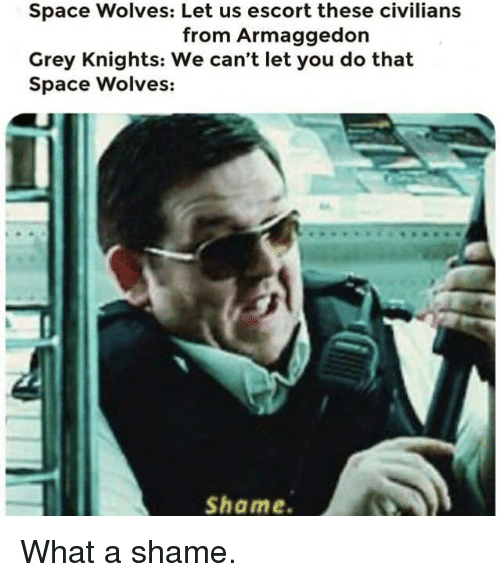 Grey, Space, and Wolves: Space Wolves: Let us escort these civilians  from Armaggedon  Grey Knights: We can't let you do that  Space Wolves:  Shame.