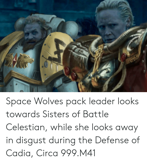 Space, Wolves, and Sisters: Space Wolves pack leader looks towards Sisters of Battle Celestian, while she looks away in disgust during the Defense of Cadia, Circa 999.M41