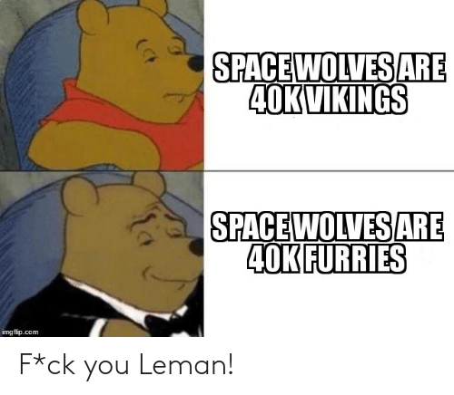 Space, Vikings, and Wolves: SPACE WOLVESARE  A OK VIKINGS  SPACE  WOLVES  40KFURRIES  ARE  imgflip.com F*ck you Leman!