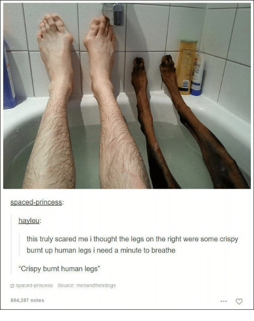 "Princess, Thought, and Human: spaced-princess  hayleu  this truly scared me i thought the legs on the right were some crispy  burnt up human legs i need a minute to breathe  ""Crispy burnt human legs""  a spaced-princess Source: menandtheirdogs  694,287 notes"
