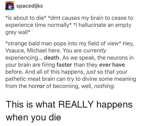 Spacedijks *Is About to Die* *Dmt Causes My Brain to Cease