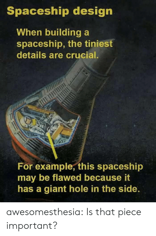 Tumblr, Blog, and Giant: Spaceship design  When building a  spaceship, the tiniest  details are crucial.  For example, this spaceshi  may be flawed because it  has a giant hole in the side. awesomesthesia:  Is that piece important?