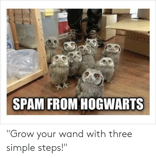 "Dank, 🤖, and Simple: SPAM FROM HOGWARTS ""Grow your wand with three simple steps!"""