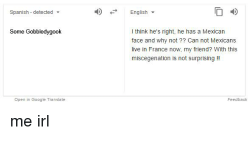 Google Spanish And France Detected Some Gobbledy Open In Translate English