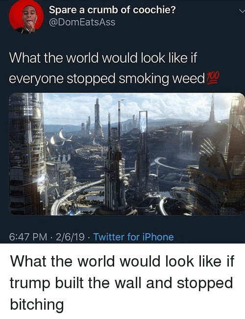 Anaconda, Funny, and Iphone: Spare a crumb of coochie?  @DomEatsAss  What the world would look like if  everyone stopped smoking weed  100  6:47 PM 2/6/19 Twitter for iPhone What the world would look like if trump built the wall and stopped bitching