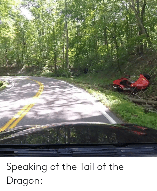 Tail Of The Dragon Photos >> Speaking Of The Tail Of The Dragon Dragon Meme On Me Me