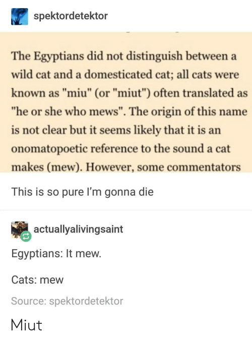 """Cats, Wild, and Cat: spektordetektor  The Egyptians did not distinguish between a  wild cat and a domesticated cat; all cats were  known as """"miu"""" (or """"miut"""") often translated as  he or she who mews"""". The origin of this name  is not clear but it seems likely that it is an  onomatopoetic reference to the sound a cat  makes (mew). However, some commentators  This is so pure I'm gonna die  actuallyalivingsaint  Egyptians: It mew  Cats: mew  Source: spektordetektor Miut"""