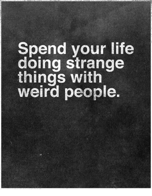 Memes Weird And  F F A  Spend Your Life Doing Strange Things With Weird People