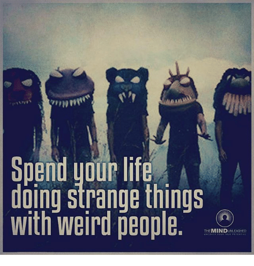 Life Memes And Weird Spend Your Life Doing Strange Things With Weird People