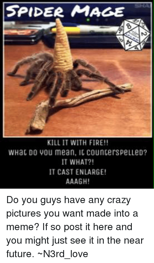 Spider Mage Kill It With Fire Whac Do You Mean Ic Councerspelled It