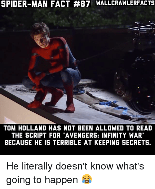 """Memes, Spider, and SpiderMan: SPIDER-MAN FACT #87 WALLCRAWLERFACTS  TOM HOLLAND HAS NOT BEEN ALLOWED TO READ  THE SCRIPT FOR 'AVENGERS: INFINITY WAR""""  BECAUSE HE IS TERRIBLE AT KEEPING SECRETS. He literally doesn't know what's going to happen 😂"""