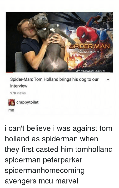 Memes, Spider, and SpiderMan: SPIDER-MAN  TCINEMAS JULY S  Spider-Man: Tom Holland brings his dog to our  interview  97K views  crappytoilet  me i can't believe i was against tom holland as spiderman when they first casted him tomholland spiderman peterparker spidermanhomecoming avengers mcu marvel