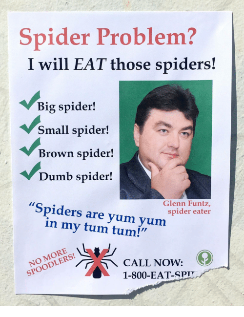 "Dumb, Spider, and Spiders: Spider Problem?  I will EAT those spiders!  Big spider!  Small spider!  Brown spider!  Dumb spider!  ""Spiders are yum yum  Glenn Funtz,  spider eater  in my tum tum!""  NO MORE  SPOODLERS!  1-800-EAT-SPI"
