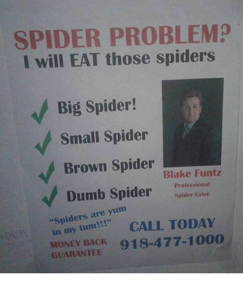 """Dumb, Money, and Spider: SPIDER PROBLEM?  I will EAT those spiders  Big Spider!  Small Spider  Brown Spider  Dumb Spider  Blake Funtz  Professional  Spider Eater  """"Spiders are yum  in my tum!CALL TODAY  MONEY BACK 918-477-1000  GUARANTEE"""