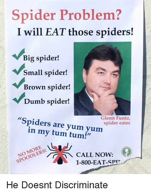 "Dumb, Spider, and Spiders: Spider Problem?  I will EAT those spiders!  Big spider!  Small spider!  Brown spider!  Dumb spider!  Spiders are yum yum  Glenn Funtz,  spider eater  in my tum tum!""  NOODLECALL NOW:  1-800-EAT-SPIT He Doesnt Discriminate"