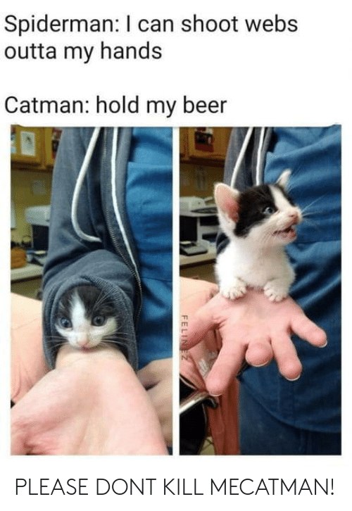 Beer, Spiderman, and Outta: Spiderman: I can shoot webs  outta my hands  Catman: hold my beer PLEASE DONT KILL MECATMAN!