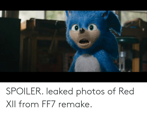 SPOILER Leaked Photos of Red XII From FF7 Remake | Ff7 Meme