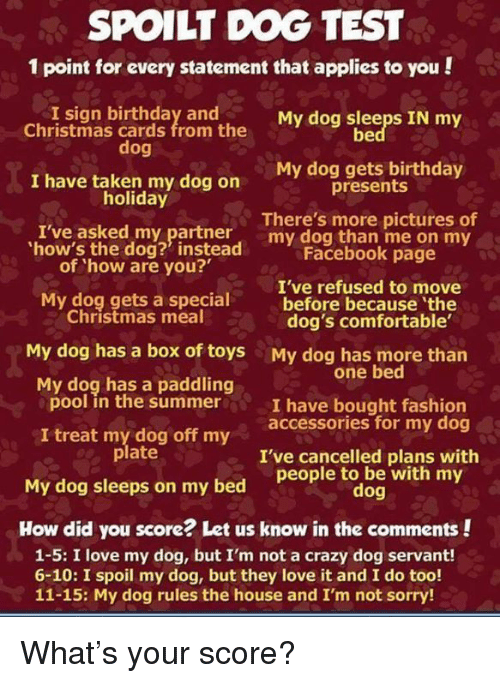 Spoilt Dog Test 1 Point For Every Statement That Applies