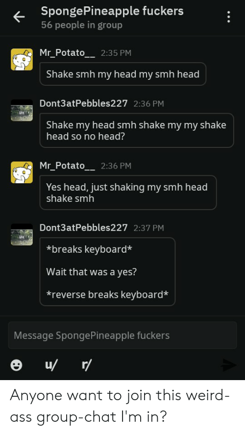 Group Chat, Head, and Smh: SpongePineapple fuckers  56 people in group  Mr_Potato  2:35 PM  Shake smh my head my smh head  Dont3atPebbles227 2:36 PM  Shake my head smh shake my my shake  head so no head?  Mr_Potato_ 2:36 PM  Yes head, just shaking my smh head  shake smh  Dont3atPebbles227 2:37 PM  breaks keyboard*  Wait that was a yes?  *reverse breaks keyboard*  Message SpongePineapple fuckers  u/ r/ Anyone want to join this weird-ass group-chat I'm in?
